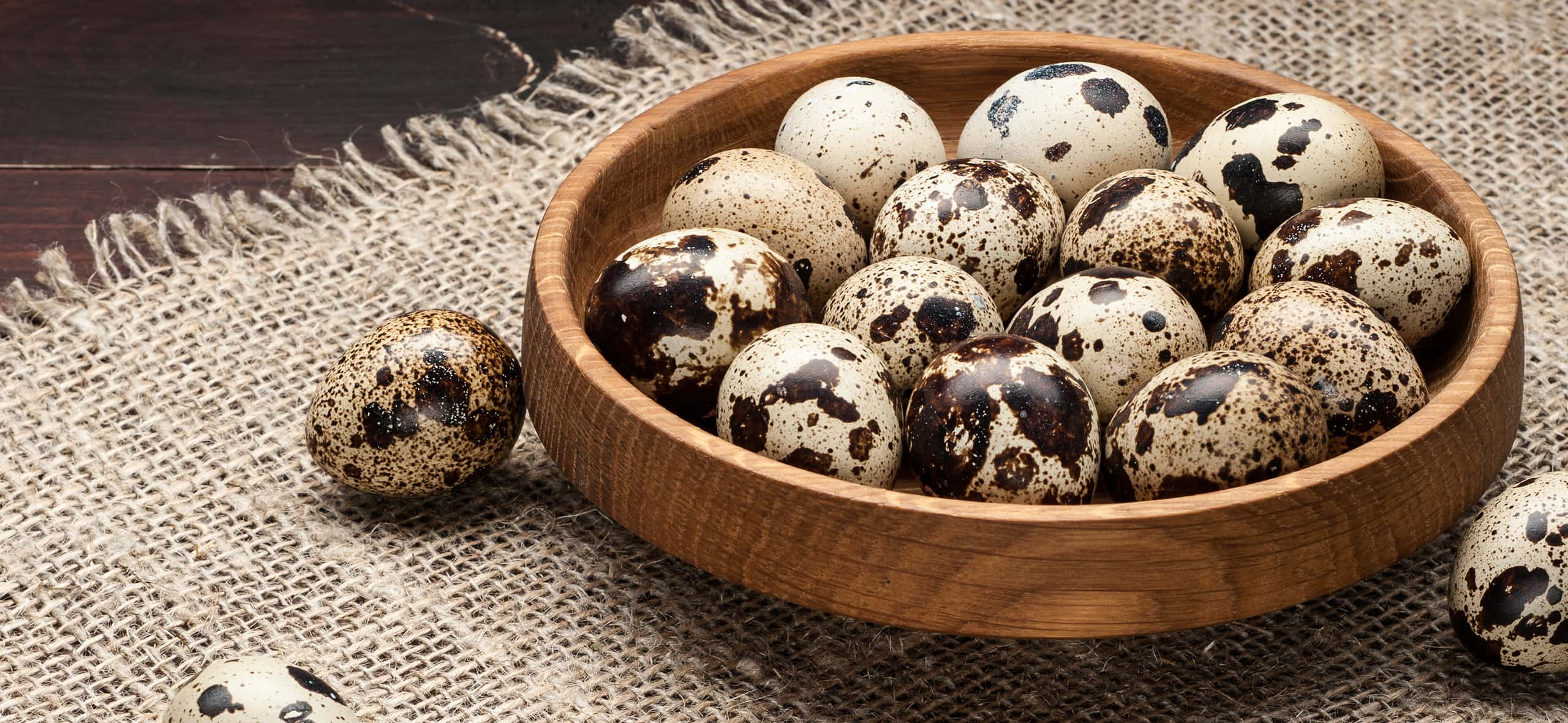 Quail Eggs: The Influence of Nutrition and Environment on Production Quality