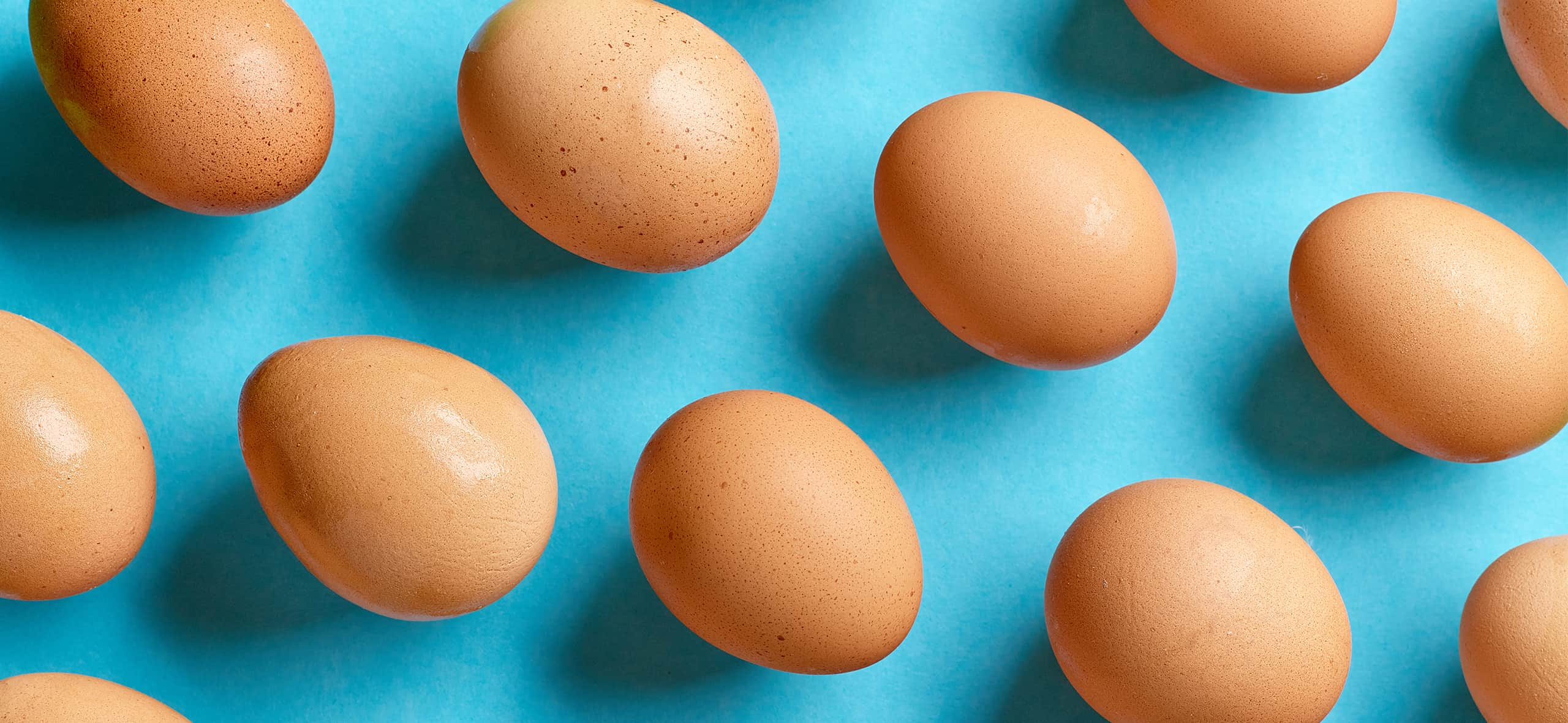Egg quality: how do packaging and storage impact the final product?
