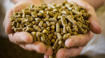 Do you know the pelletized feed manufacturing process?