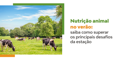 Animal nutrition in the summer: learn how to overcome the main challenges of the season