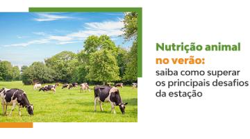 Nutrição animal no verão: saiba como superar os principais desafios da estação