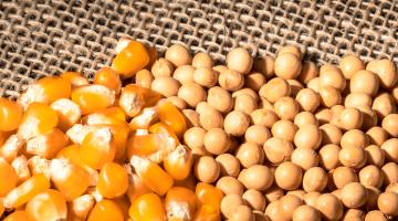 Insumos agrícolas: Impactos en la producción animal y alternativas para evitar pérdidas en 2021