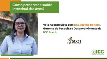 Entrevista: como preservar a saúde intestinal das aves?